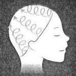 ※髪の生え際から、頭の輪郭に沿って 頭頂部まで、指の腹でゆっくり 円を描きながらほぐすように。