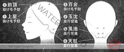 ※1~6の順に、指の腹で垂直に5秒ほど押えます。